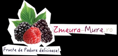 Zmeura si Mure - Fructe de padure delicioase!